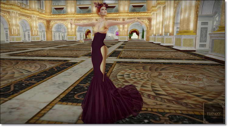 td-anary-gown_002